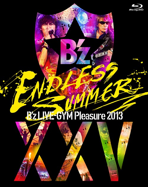 pleasure2013completebd